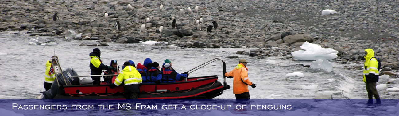 Passengers from the MS Fram get a close-up of penguins from their Polar Cirkel boat